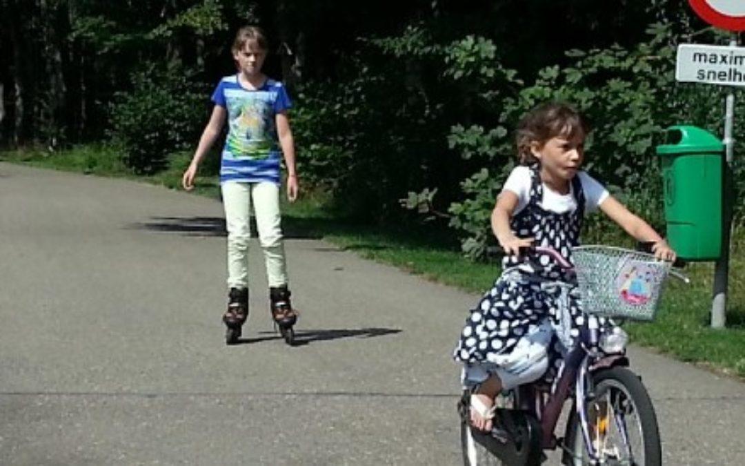 Ferienpark mit  Inline-Skatestrecken posterbos