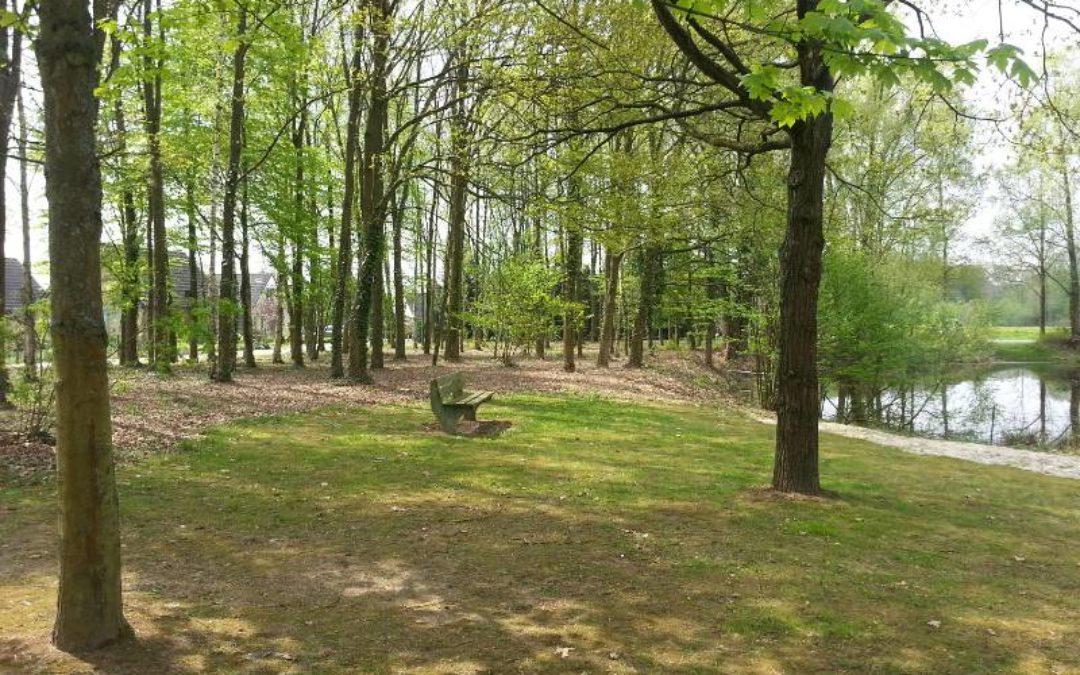bankje-tussen-de-bomen-posterbos
